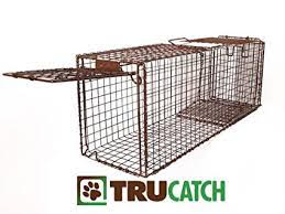 //flagler-cats.org/wp-content/uploads/2019/12/trucatch-cat-trap-flagler.jpg